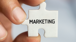 Why the Marketing Team Should Care about the CLV?