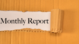 Do You Do Monthly Reports?